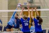 Jersey Volleyball Wins Tournament
