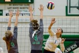 Brussels Volleyball Back To Winning After Short Slump