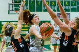 Miners Battle Birds For A Win At Piasa