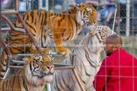 Shrine Circus Entertains Jerseyville